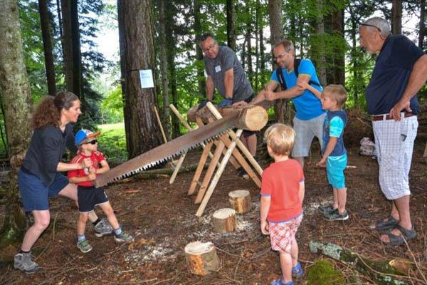 In der Gruppe zersägen Lehrer mit Kindern einen Baumstamm im Wald